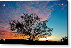 Outback Sunset Pano Acrylic Print