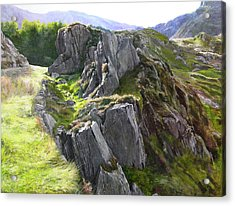 Outcrop In Snowdonia Acrylic Print by Harry Robertson