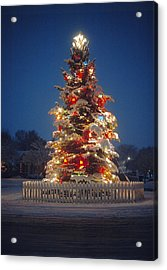 Outdoor Christmas Tree Acrylic Print by Utah Images