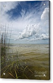 Outer Banks Coastline Acrylic Print by Matt Tilghman