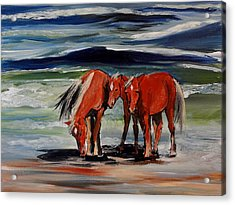 Outer Banks Wild Horses Acrylic Print