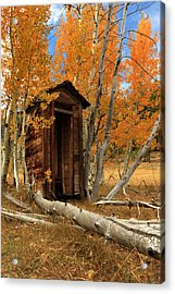 Outhouse In The Aspens Acrylic Print