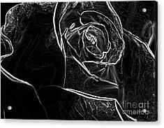 Acrylic Print featuring the photograph Outline Of A Rose by Micah May