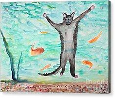 Outside The Fish Tank Acrylic Print by Stella Sherman