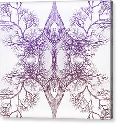 Outward Tree 9 Hybrid 4 Acrylic Print