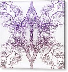 Outward Tree 9 Hybrid 4 Acrylic Print