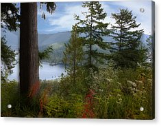 Over Burrard Inlet Acrylic Print by Barbara  White