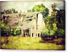 Acrylic Print featuring the photograph Over Grown by Julie Hamilton