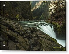 Over The Edge Signed Acrylic Print