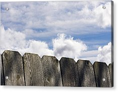 Over The Fence Acrylic Print by Rebecca Cozart