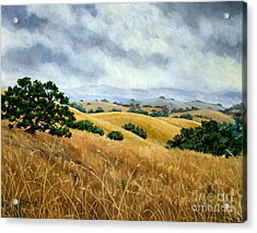 Overcast June Morning Acrylic Print by Laura Iverson