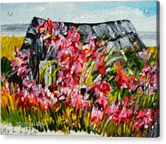 Overgrown Rosebushes Acrylic Print by Terry Lash