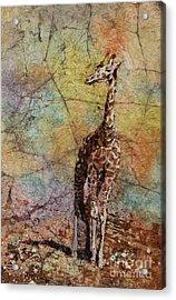 Overlook Acrylic Print by Ryan Fox