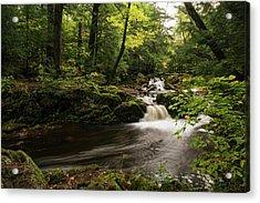 Overlooked Falls Acrylic Print