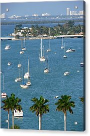 Overlooking A Miami Marina Acrylic Print by Margaret Bobb