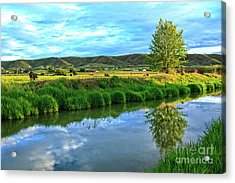 Overlooking Irrigation Canal Acrylic Print