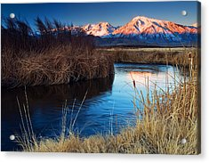 Owens River Sunrise Acrylic Print by Nolan Nitschke