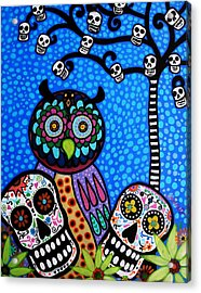 Owl And Sugar Day Of The Dead Acrylic Print