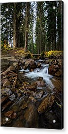 Owl Creek Cathedral Acrylic Print by Jennifer Grover