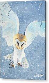 Owl Detail Acrylic Print