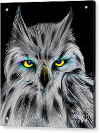 Acrylic Print featuring the drawing Owl Eyes  by Nick Gustafson