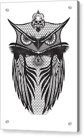 Owl Illustration Acrylic Print