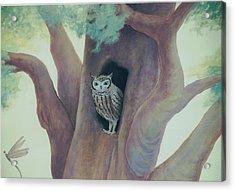 Owl In Tree Acrylic Print