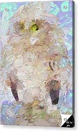 Acrylic Print featuring the digital art OWL by Jim  Hatch