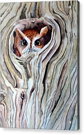 Acrylic Print featuring the painting Owl by Laurel Best