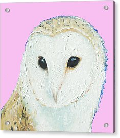 Owl Painting On Pink Background Acrylic Print by Jan Matson