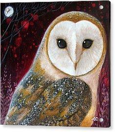 Owl Power Animal Acrylic Print by Amanda Clark
