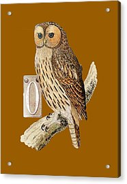 Owl T Shirt Design Acrylic Print by Bellesouth Studio