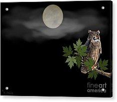 Acrylic Print featuring the digital art Owl by Terri Mills