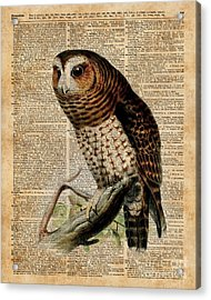 Owl Vintage Illustration Over Old Encyclopedia Page Acrylic Print by Jacob Kuch