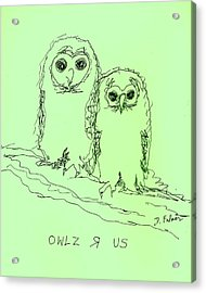 Acrylic Print featuring the drawing Owlz R Us by Denise Fulmer