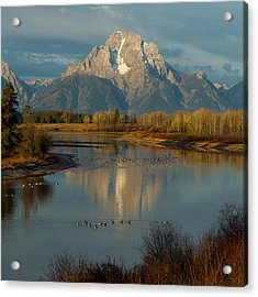 Oxbow Bend Acrylic Print by Brian Governale