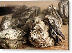 Oyster Roast Acrylic Print