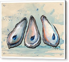 Oyster Shells Acrylic Print by Elaine Hodges