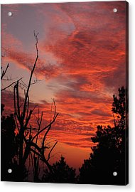 Acrylic Print featuring the photograph Ozark Dawn by Michael Dougherty