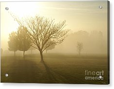 Ozarks Misty Golden Morning Sunrise Acrylic Print