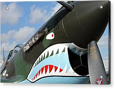 P-40 Flying Tigers Acrylic Print by Mark Grayden