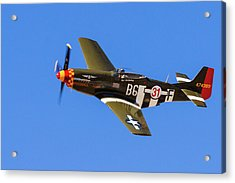 P-51 Speedball Alice Acrylic Print