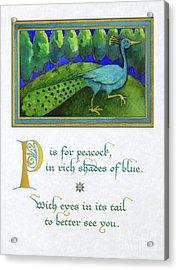 P Is For Peacock Acrylic Print