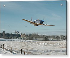 Acrylic Print featuring the digital art P51 Mustang - Bodney Blue Noses by Pat Speirs