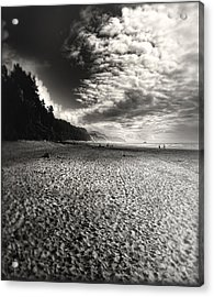 Acrylic Print featuring the photograph Pacific Coast Highway Oregon by Douglas MooreZart