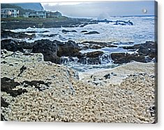 Acrylic Print featuring the photograph Pacific Gift by Dale Stillman