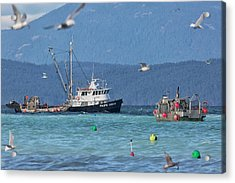 Acrylic Print featuring the photograph Pacific Ocean Herring by Randy Hall