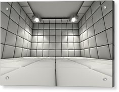 Padded Cell Acrylic Print