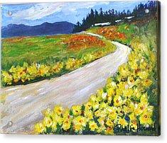 Padilla Trail Acrylic Print