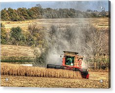 Page County Iowa Soybean Harvest Acrylic Print